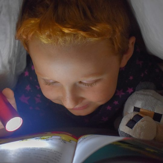 Lesen lernen – mit diesen Tipps klappt es stressfrei!
